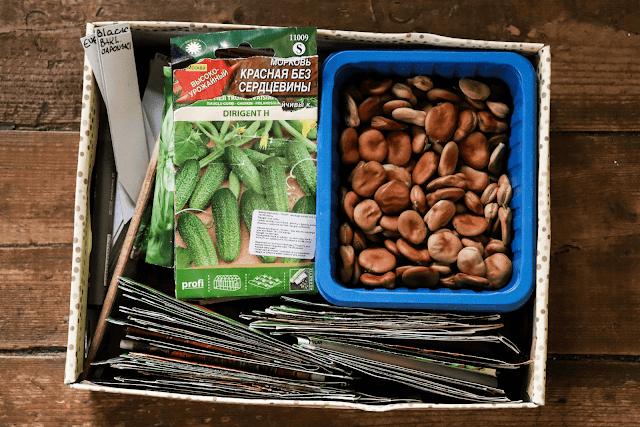 Mida külvata ehk seemnete sorteerimine uueks hooajaks