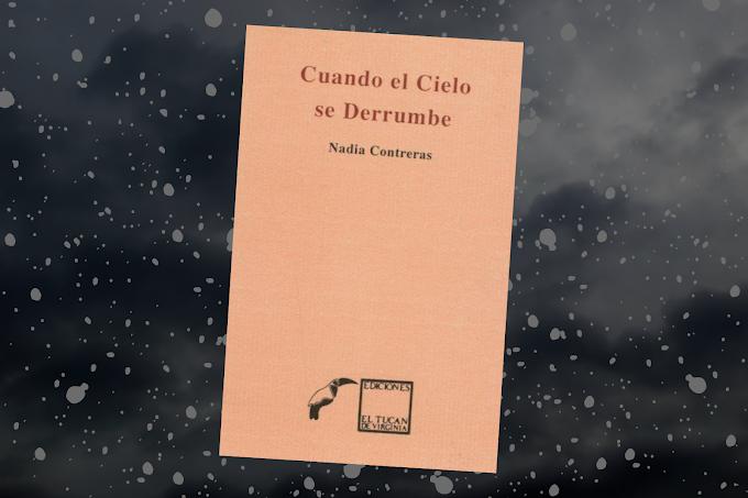 Cuando el cielo se derrumbe, libro de Nadia Contreras para descarga gratuita