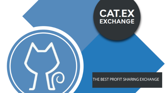 Why You Should Choose Cat.Ex Over Other Exchanges