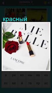 на листе бумаги лежит красная роза и помада 667 слов 2 уровень
