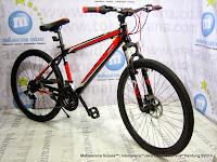 26 Inch Exotic ET2699 Disc Frame Alloy 21 Speed Mountain Bike