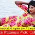 Sumudu Pradeepa Photo Collection