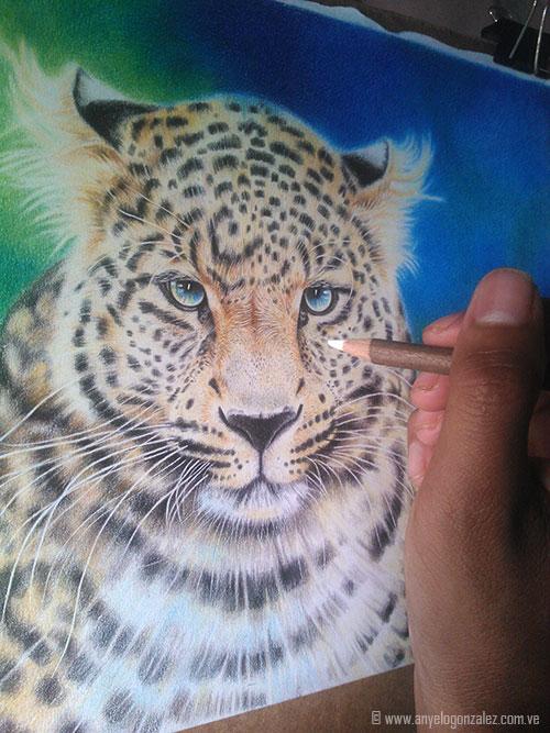 Proceso Dibujo Leopardo