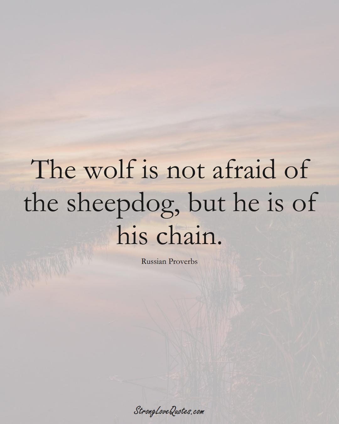 The wolf is not afraid of the sheepdog, but he is of his chain. (Russian Sayings);  #AsianSayings
