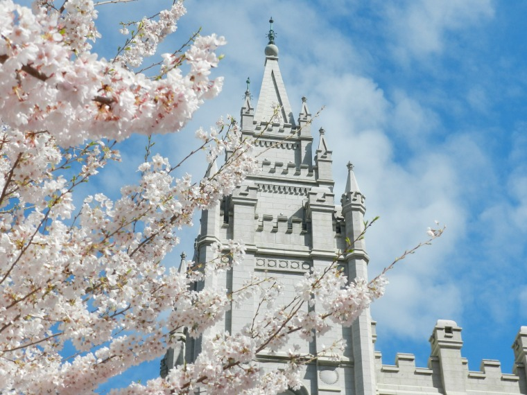 Salt Lake Temple with Spring Blossoms Photograph:  Grow Creative