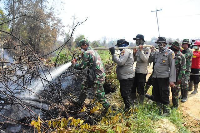 Danrem 031/WB Dampingi Kepala BNPB Turun Langsung Padamkan Karhutla