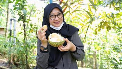 Wisata ke Surga Durian di Banyuwangi