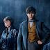 Animais Fantásticos: Os Crimes de Grindelwald | Primeira imagem e título oficial são divulgados