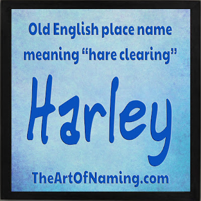 The Art of Naming - Old English place name meaning hare clearing, meadow