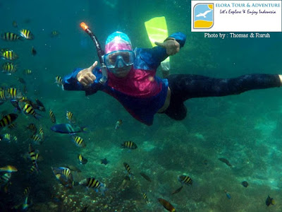 foto snorkeling di pulau pahawang eloratour adventure