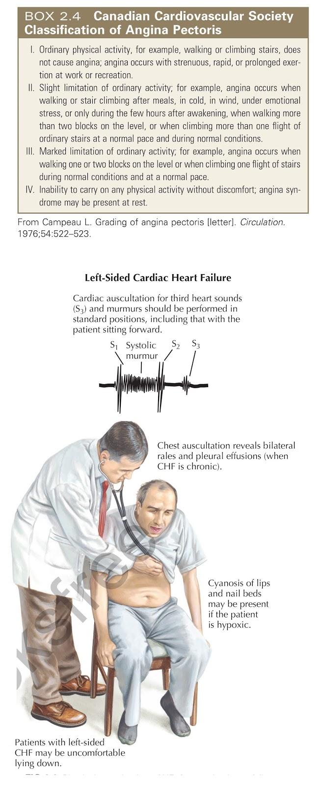 Physical examination. CHF, Congestive heart failure.