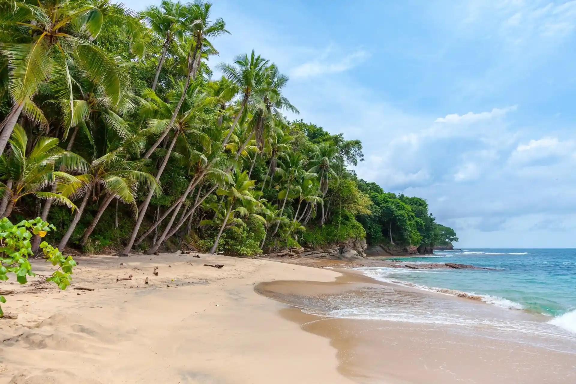 aprende ingles playa arena fina suave palmeras paraiso