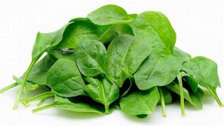 Rekomendasi Herbal : Khasiat Sayuran Bayam untuk Kesehatan Manusia