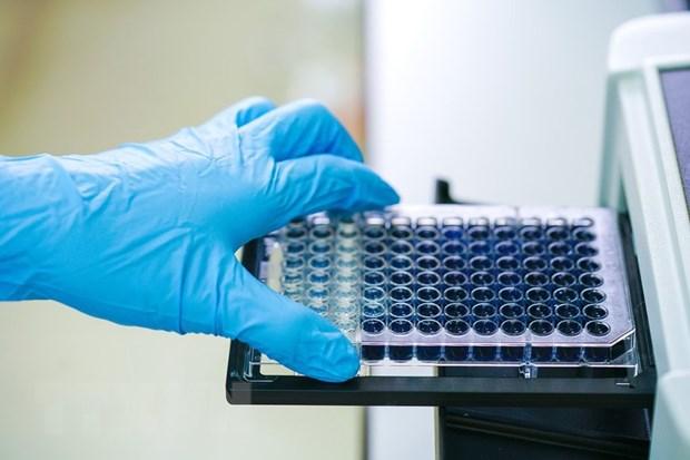 Nhật Bản tìm ra hướng chữa trị triệu chứng do SARS-CoV-2 gây ra
