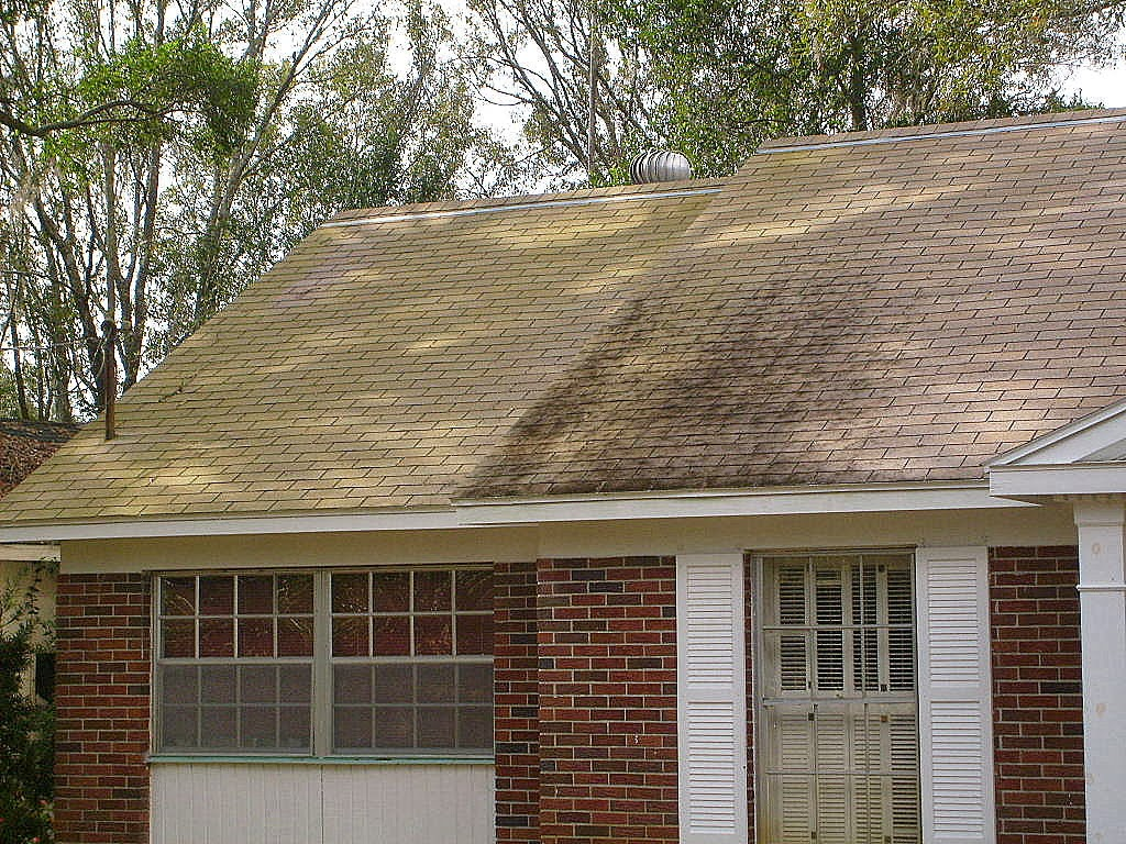 Shingle Roof Cleaning Valrico Florida Apple Roof