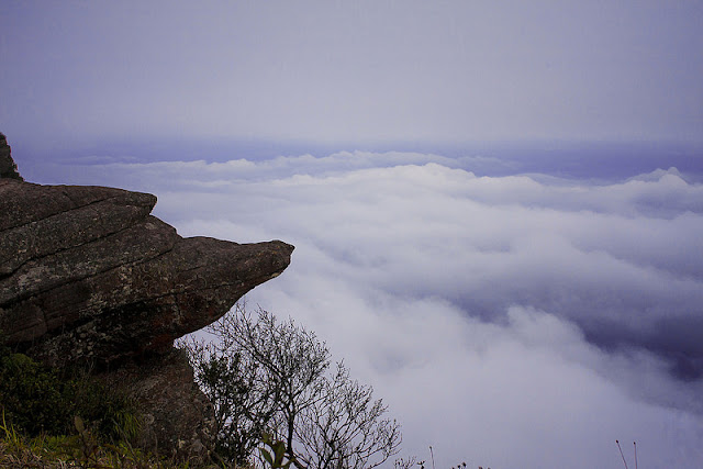 Conquer the roof of Moc Chau plateau with your feet 1