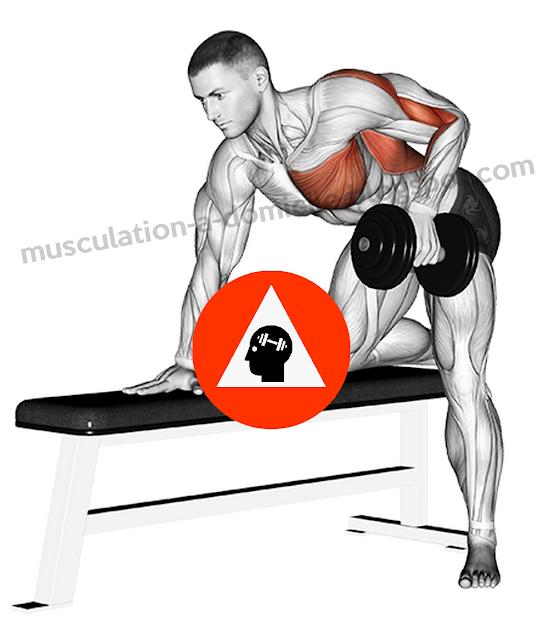 exercice musculation dorsaux rowing haltère unilatéral