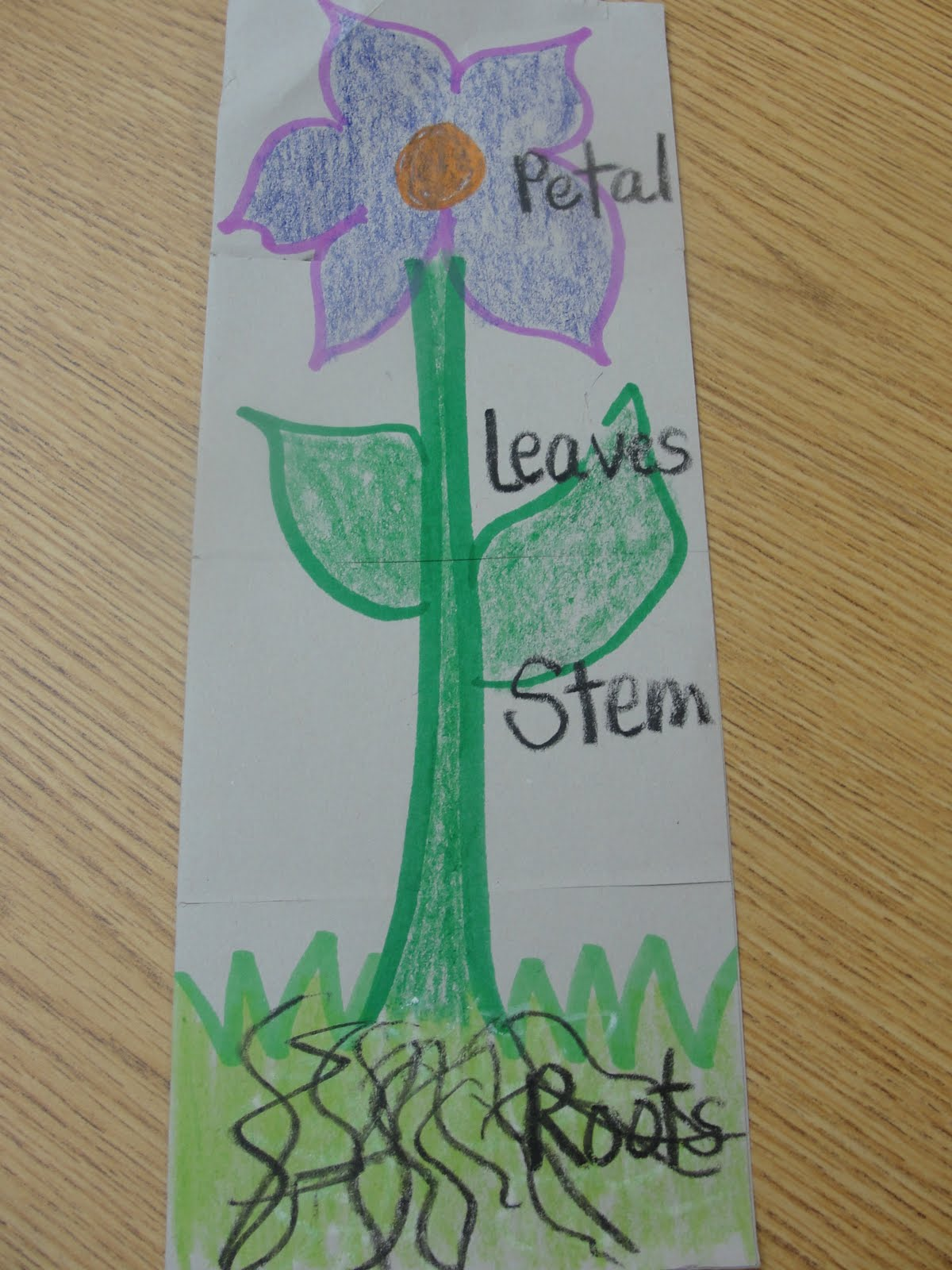 Step Into 2nd Grade With Mrs Lemons Ways To Use Flap Books