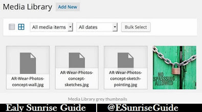 Wordpress Blank Photo
