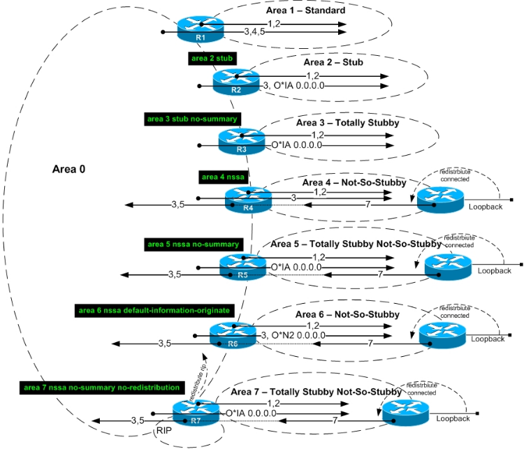 routing ospf