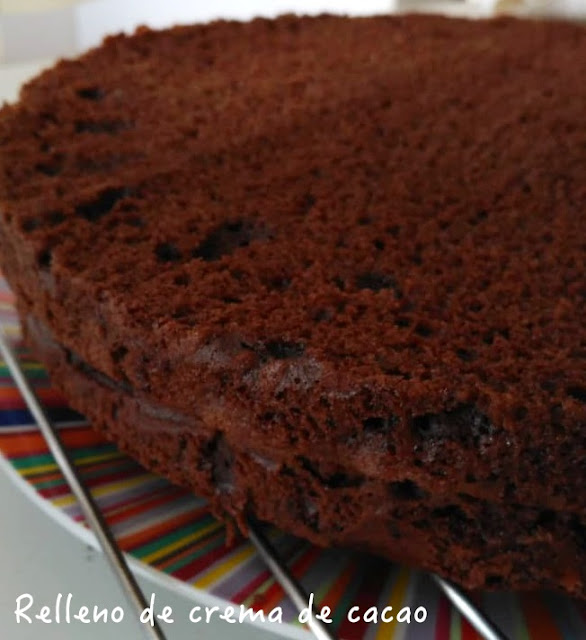 Bizcocho de chocolate relleno de cacao