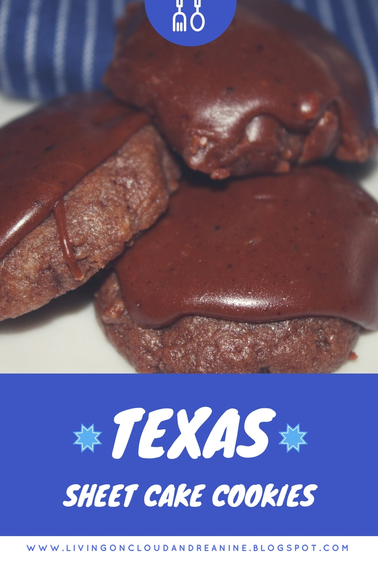 Texas Sheet Cake Frosting With Chocolate Chips