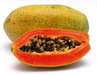 Tiga manfaat pemberian buah pepaya pada ayam bangkok aduan