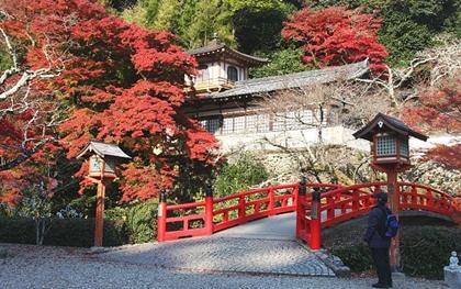 วัดเรียวอันจิ (Ryuanji Temple) @ www.japan-guide.com