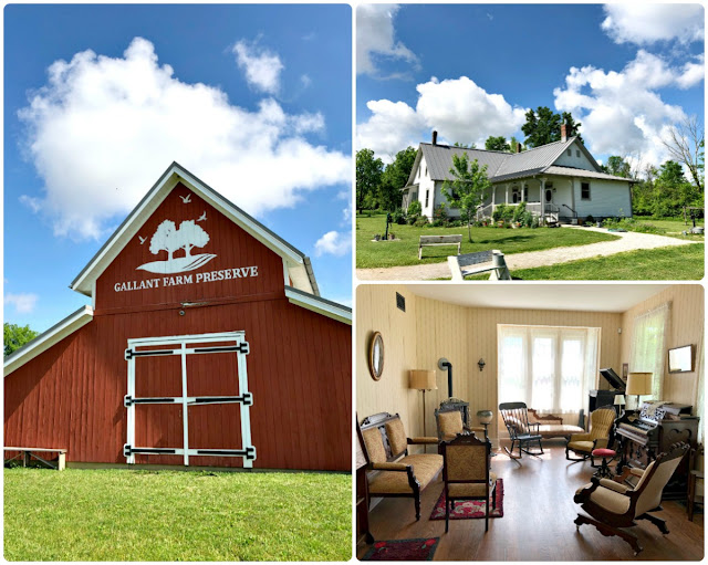 A visit to Gallant Farm Preserve in Delaware County, Ohio is like stepping back in time. Visitors get to experience what it would have been like to live on a Depression-era farm in Ohio during the 1930's & 1940's.