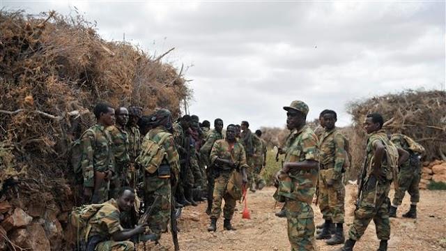 Al-Shabab Takfiri militants takes control of key town in central Somalia