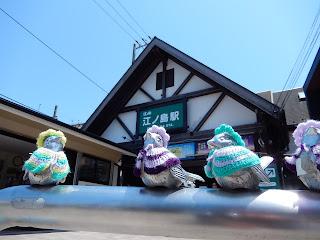 江の島駅の小鳥たち