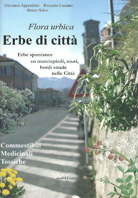Front cover of Erbe di città.