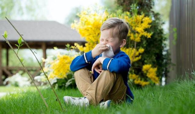 Çocuklarda alerji nedir? Nasıl Tedavi Olunur?