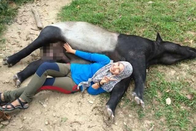 """""""Bukan Nak Pegang Anunya,"""" Hazren Perjelas Isu Pegang Perut Tapir"""
