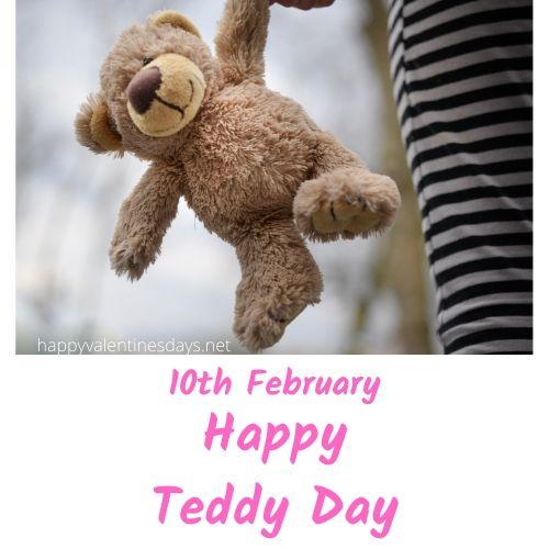 february special day : 10 feb happy teddy day 2020