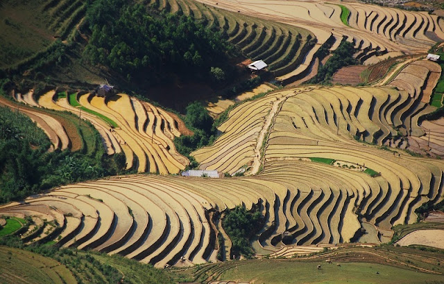 Ideal places for travelling by motorbike in Vietnam4