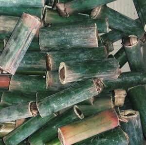 Salah satu EF alternatif yaitu ulat bambu Ulat Bambu Untuk Burung Berkicau
