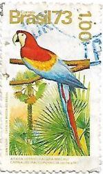 Selo Arara Vermelha