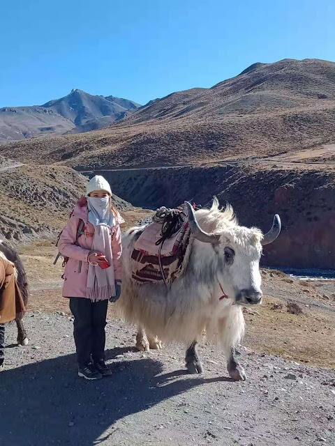 西藏旅遊計畫