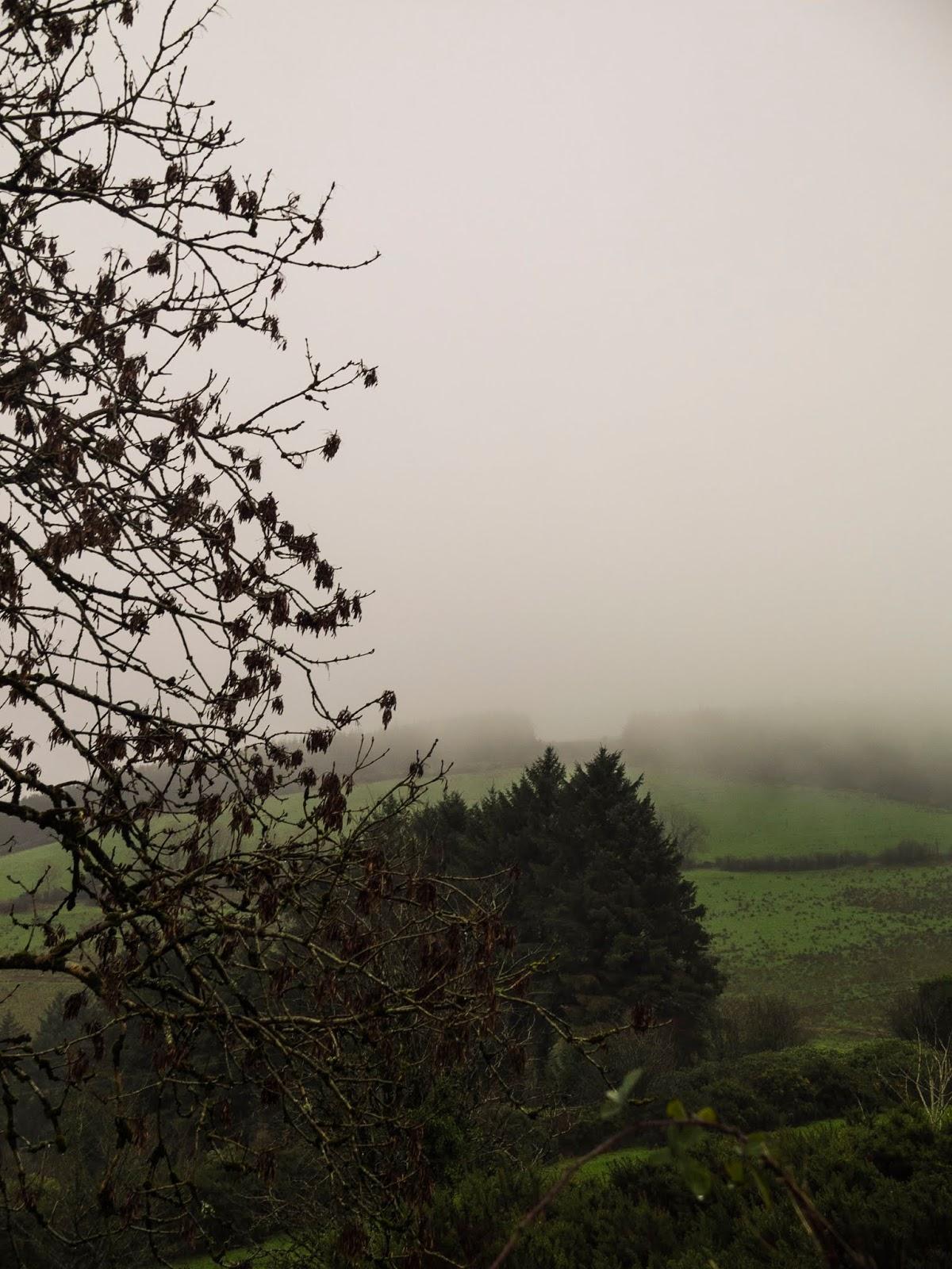 Foggy mountainside landscape in North Cork.