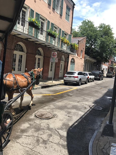 Family Vacation - NOLA French Quarter
