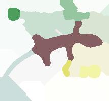 sport svago geco