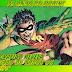 """75 anos do ROBIN!  Infográfico revela evolução de todos os """"Robins"""""""