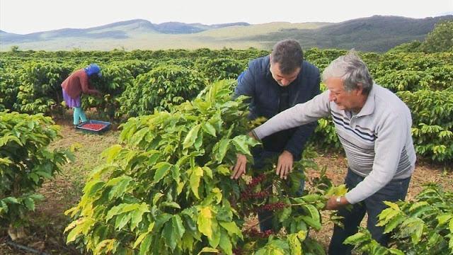 O total, 17 produtores de Piatã e um de Barra do Choça estão na lista dos melhores cafés do mundo (Foto: Reprodução)