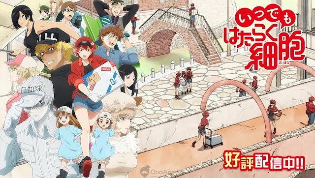 Manga Cells at Work Dipastikan Tamat Tahun Depan, Berikut Penjelasan Lengkapnya