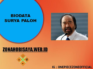 PROFIL : SURYA PALOH