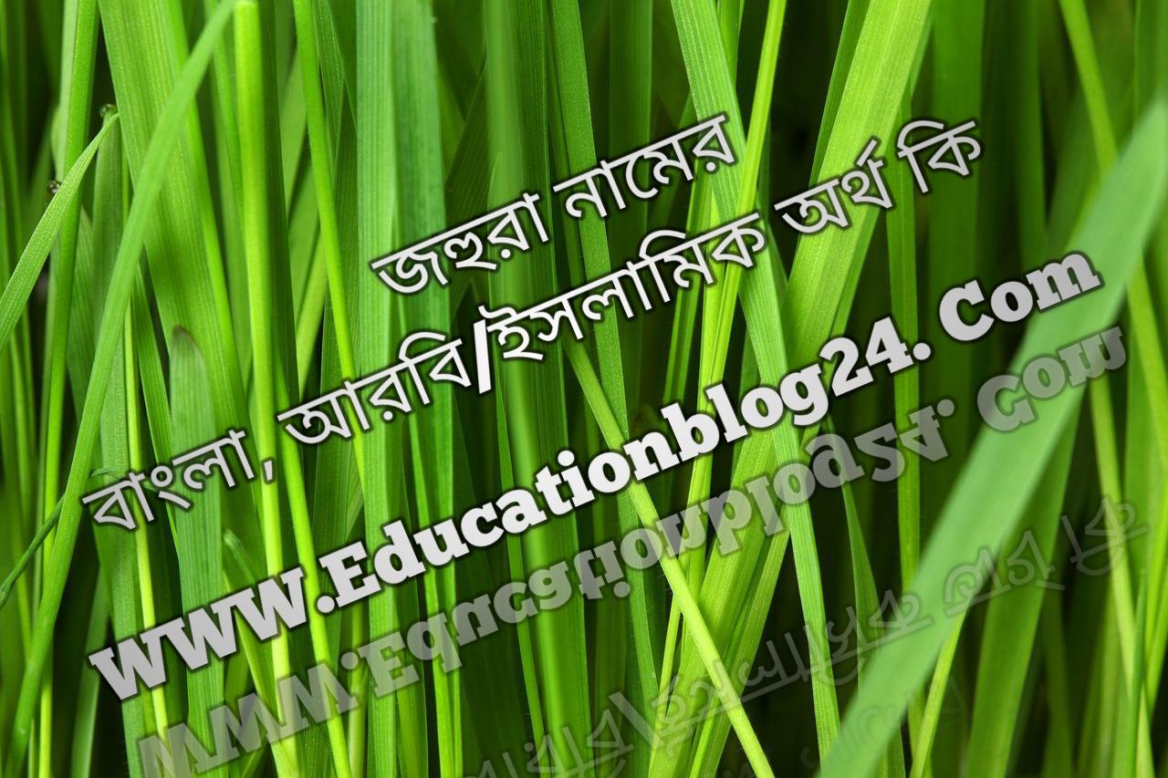 Johura name meaning in Bengali, জহুরা নামের অর্থ কি, জহুরা নামের বাংলা অর্থ কি, জহুরা নামের ইসলামিক অর্থ কি, জহুরা কি ইসলামিক /আরবি নাম