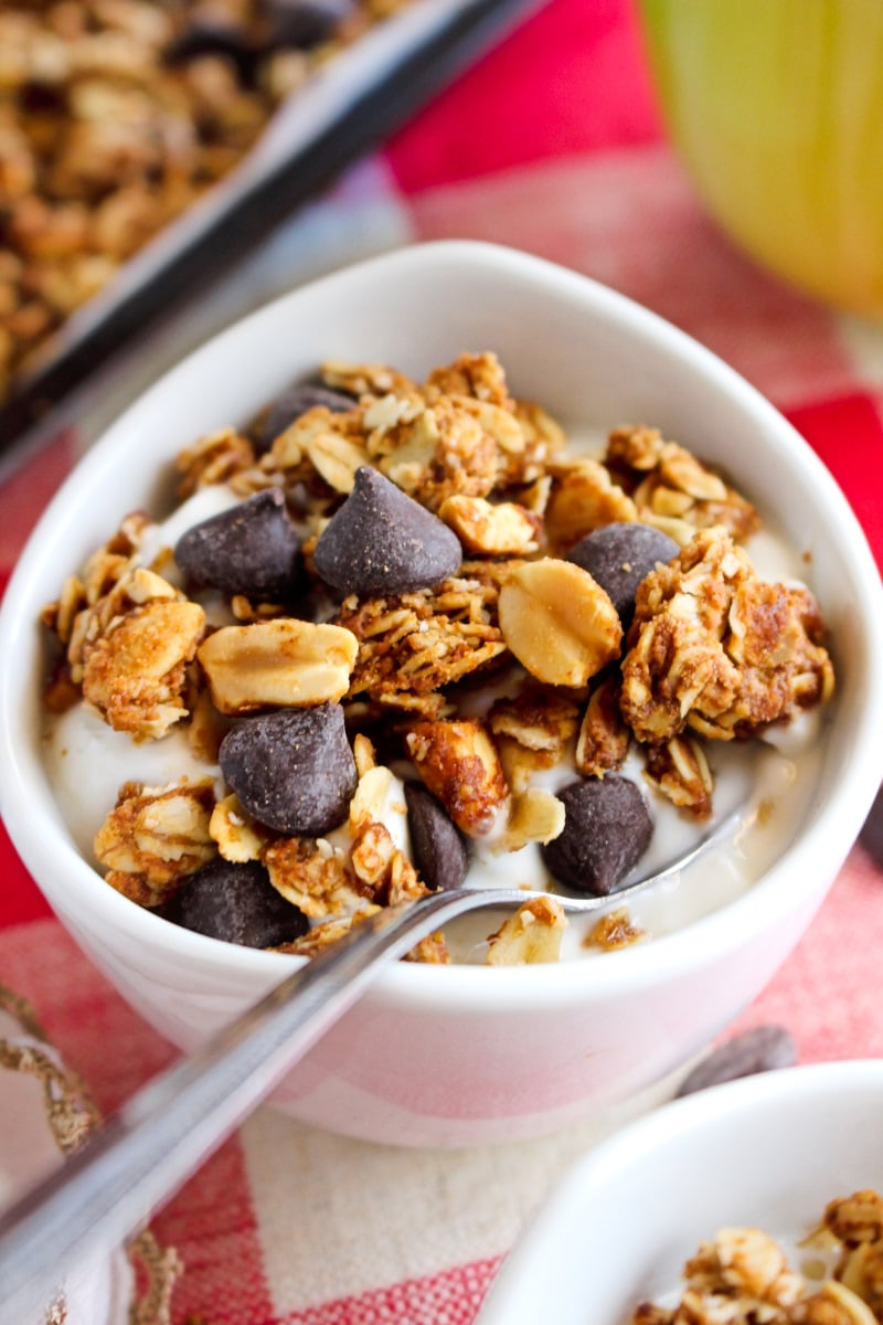 Side view of a white bowl of yogurt topped with Chocolate Chip Peanut Butter Granola on a red and white checkered background.