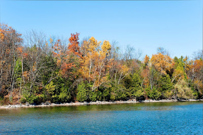Shoreline at Hawkestone, Ontario in the fall.