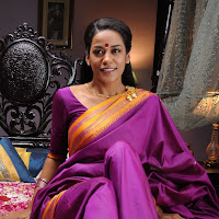 Mumaith khan hot in saree photos